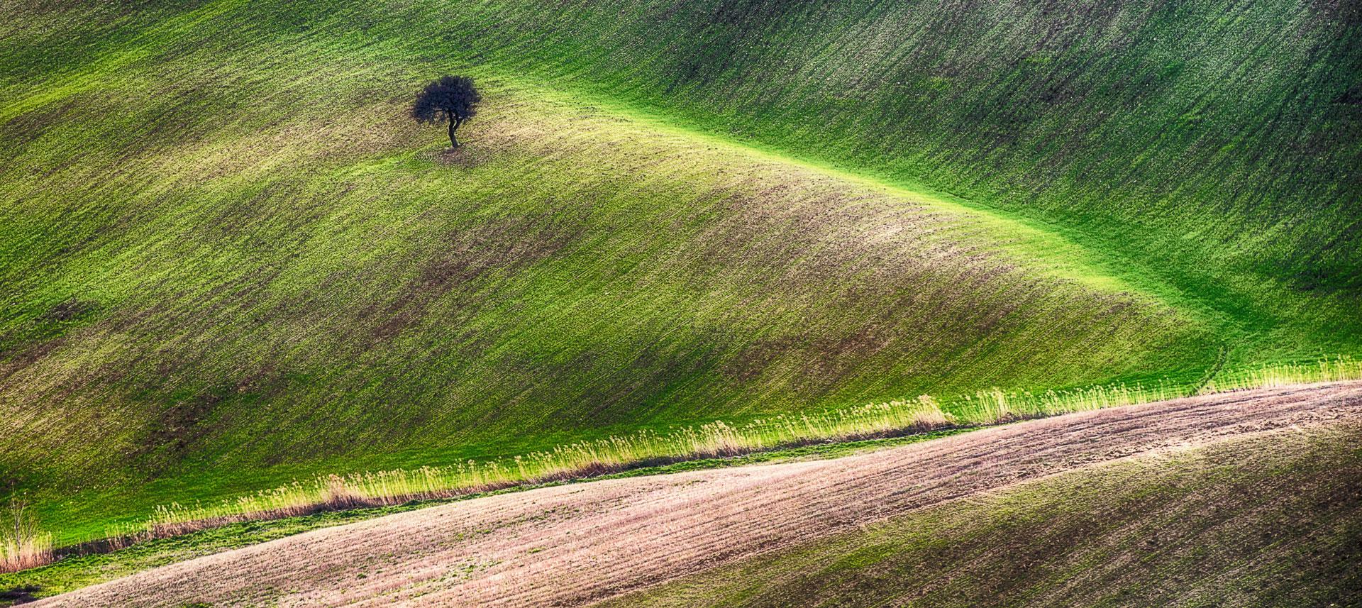 Spring landscape piano solo album